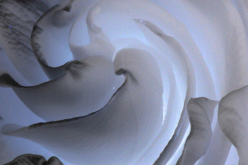 Gardenia-Storm.jpg