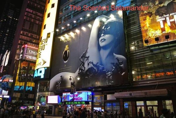 Lady_Gaga_Fame.jpg