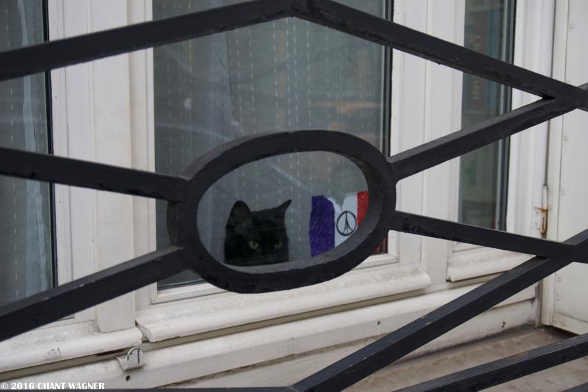 Le_chat_noir_peace_for_paris.jpg