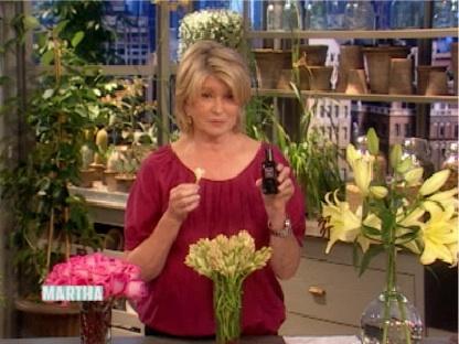 Martha-Stewart-Fracas.jpg