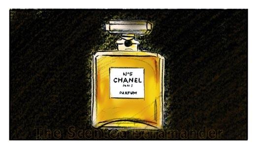 No5-Story-Board-Bottle-B.jpg