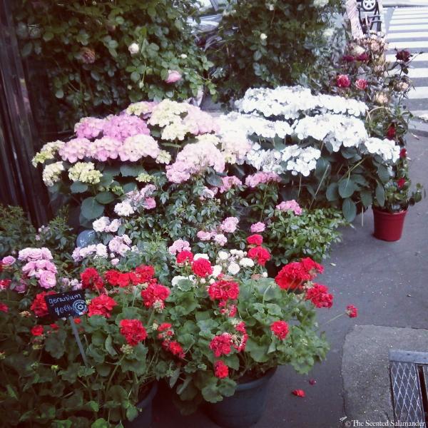 Paris_Sidewalk_Covered_with_Flowers.jpg