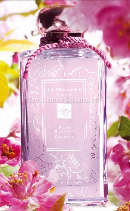 Plum_Blossom_Malone_Bottle_2.jpg