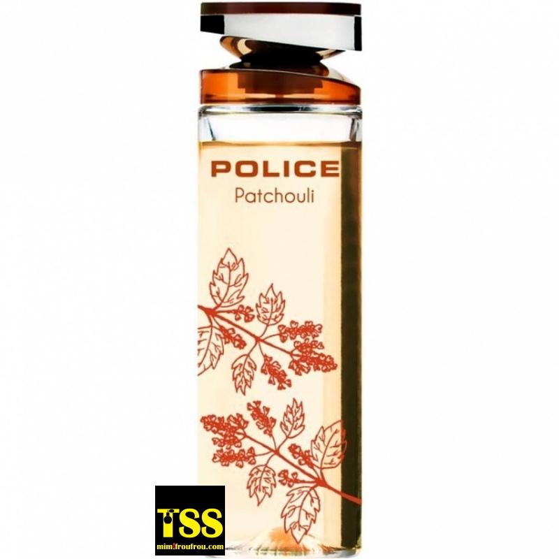 Police_Patchouli.jpg