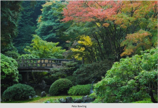 Portland-Japanese-Garden-Bowling.jpg