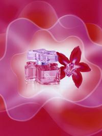Red Orchid_Oscar.jpg