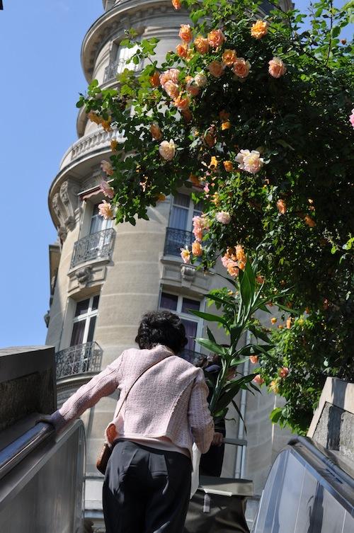 Roses_Passy_Metro.jpg