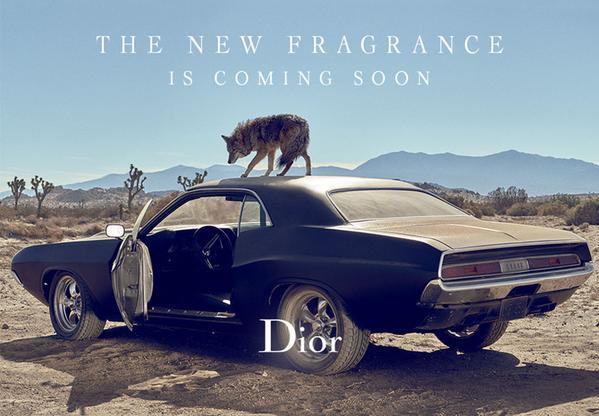 Sauvage_Dior_Teaser.jpg