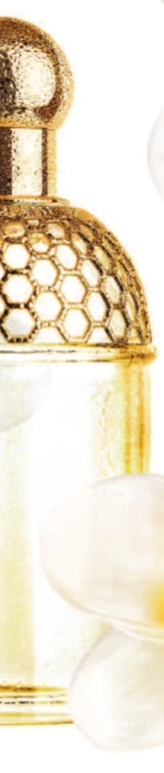 Tiare-Mimosa-2.jpg