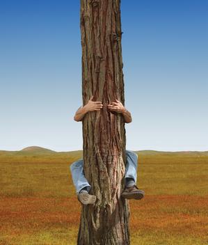 Tree-Hugger-Licensed-TSS.jpg