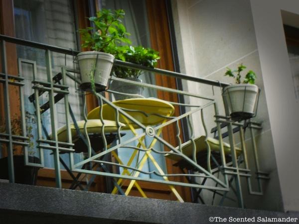 balcon_Paris_Géraniums_jaune_vert - blog.jpg
