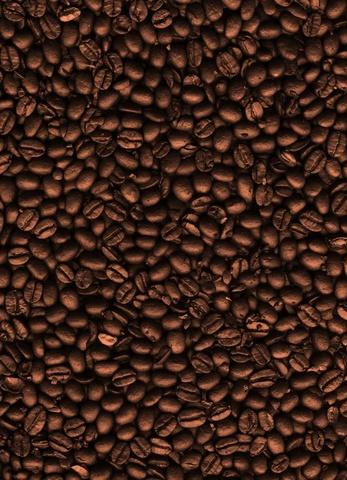 dreamstime_3377521-Coffee-Beans.jpg