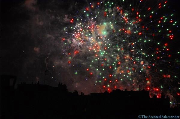 fireworks-bastille-2010-2-D.JPG