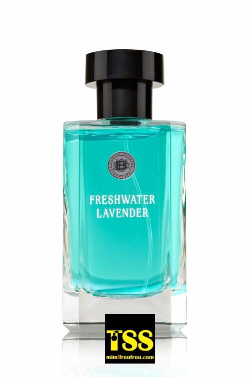 freshwater_lavender.jpg