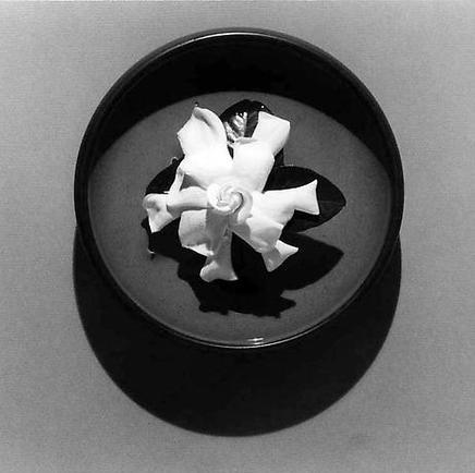 gardenia-mapplethorpe-1978.jpg