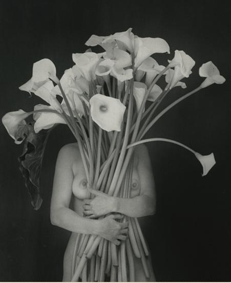 garduno-flor-embrace-of-light-abrazo-2000.jpg