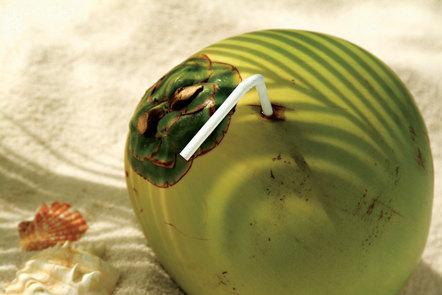 green_coconut_toddy.jpg