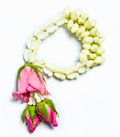 jasmine-garland.jpg
