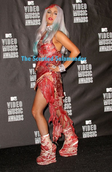 lady-gaga-meat-dress-A.jpg
