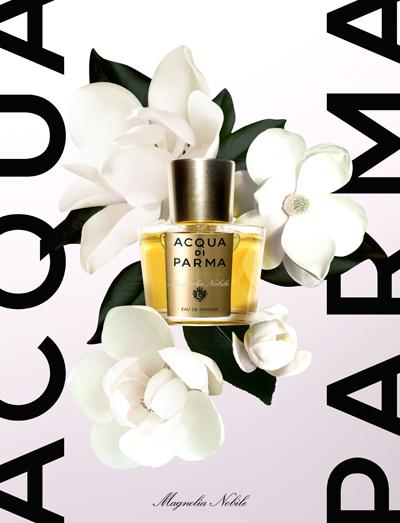 magnolia-nobile-ad.jpg