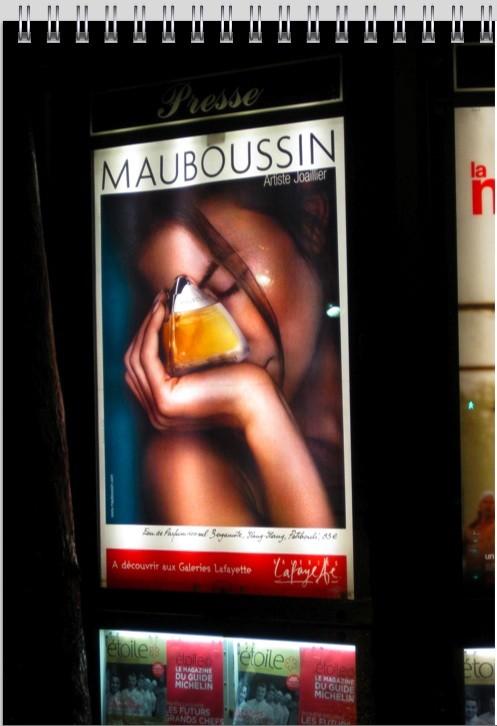 mauboussin-ad-jan-2010-B.jpg