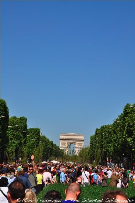 paris_nature_capitale_ok.jpg