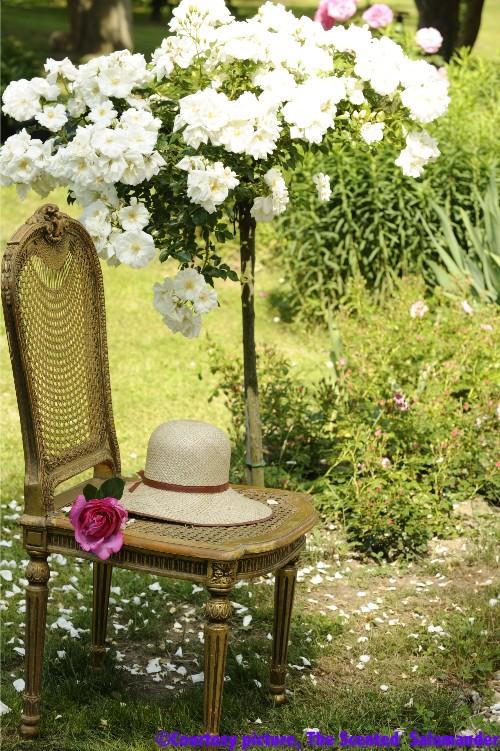 rosine_rogeon_rose_garden.jpg