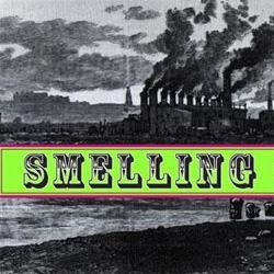 smellingctee.jpg